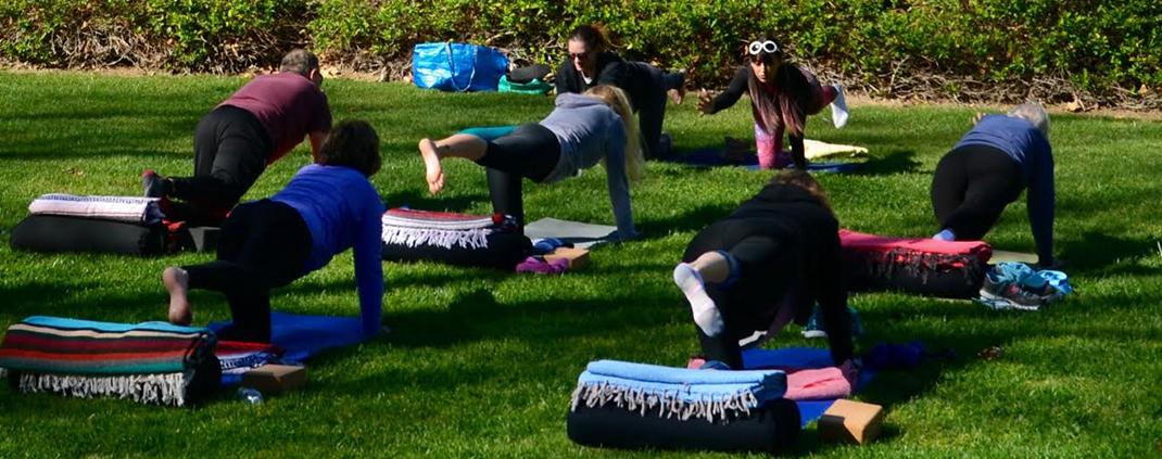 Premier Concierge Medicine yoga session